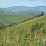 Landschaft am Fuße des Altai